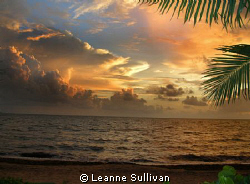 Beautiful day to dive... These wonderful sunrises greeted... by Leanne Sullivan 